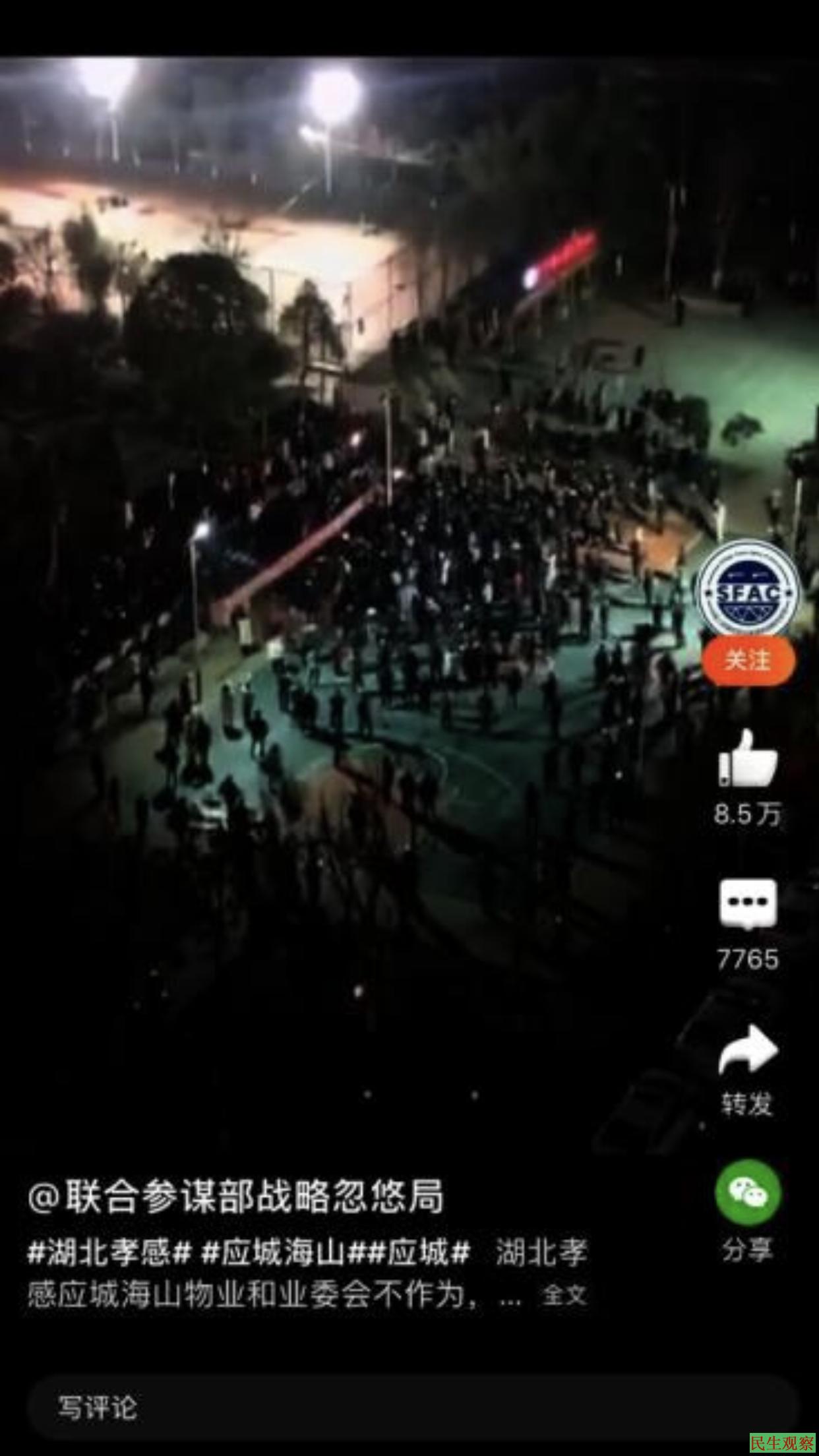 湖北居民抗议高价菜被刑拘